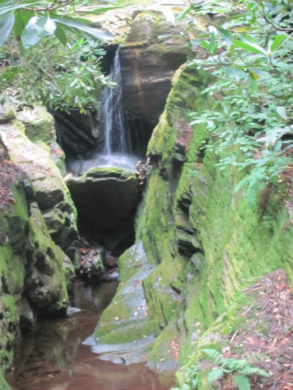North Carolina Waterfalls Hiking Linville Gorge