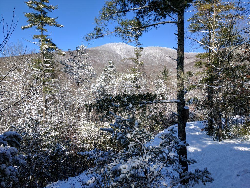 blue ridge parkway cabin rental